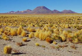 Salendo verso l'altipiano della Bolivia